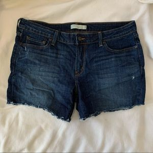 Levi's low 545 Jean Shorts Size 14M